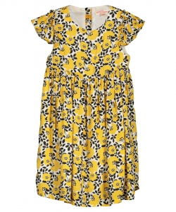 Falirob1 Girls Printed Viscose Dress